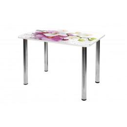 Стол обеденный стеклянный  СО-Д-01-11