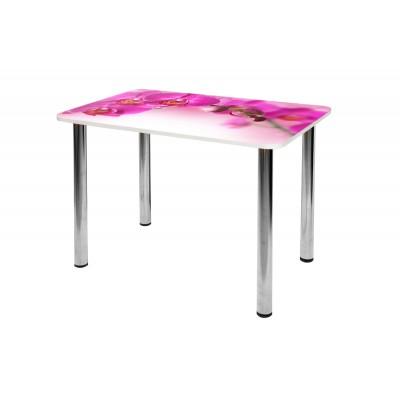 Стол обеденный СО-Д-01-9