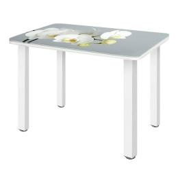 Стол обеденный стеклянный СО-Д-01-28