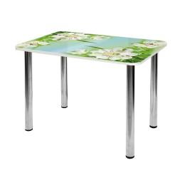 Стол обеденный  стеклянный  СО-Д-01-18